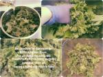 Massage the Kale